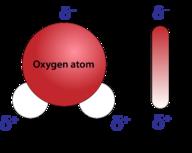 air molekul polar