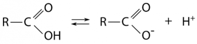 Keseimbangan antara gugus karboksil dan anion karboksilat