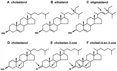 Perbedaan Antara Sterol dan steroid
