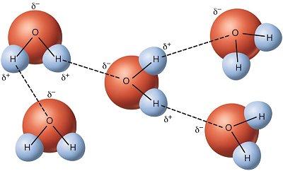 ikatan hidrogen pada air