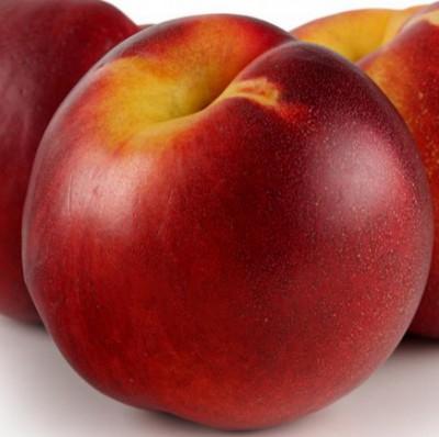 sianida pada buah