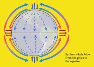 Diagram arah angin