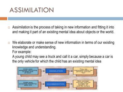 Pengertian Proses Dan Contoh Asimilasi Sosiologi Usaha321