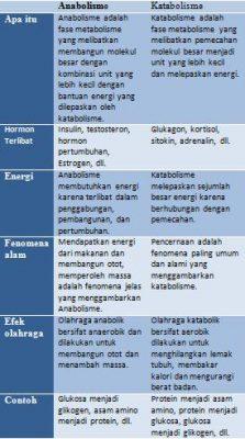 Perbezaan Antara Catabolisme dan Anabolisme