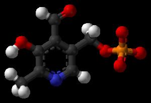 Piridoksal fosfat